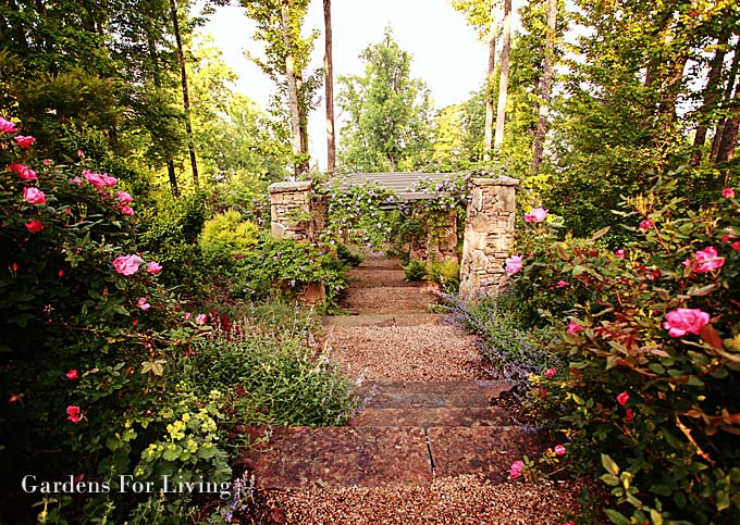Western garden ideas photograph western gardens consultant for Garden consultant